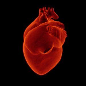 Amikor valami nem stimmel, az szívinfarktus is lehet!